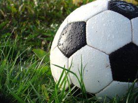 grass-sport-game-green-soccer-football-sports-equipment-net-ball-927727-280x210