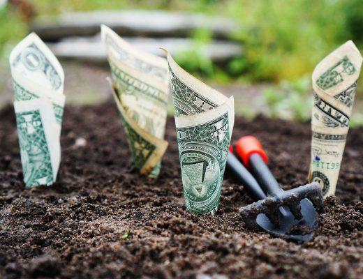 money-1604921_1280-520x400
